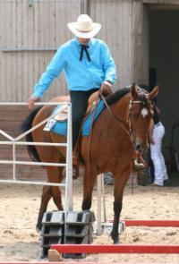 Reiterhof Goesingen Trainer Thomas Borchert